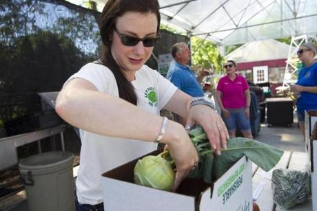 Lynn Stromberg, cofounder of Lettuce Be Local, packs vegetables at a CSA pickup at Harvey's Farm & Garden Center in Westborough.